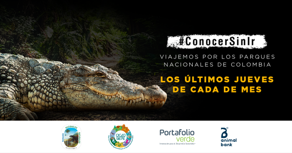 Conocer sin ir, Parques Nacionales de Colombia